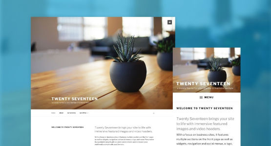 wordpress-twenty-seventeen-majaslapa-theme